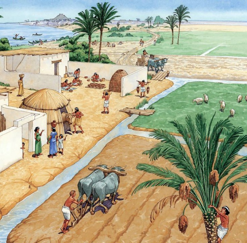 ancient-mesopotamian-agriculture-facts-irrigation-system-drainage-systems-economy-cultivation.jpg